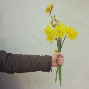 fiori-foto-social-brand-identity-tizianagallo