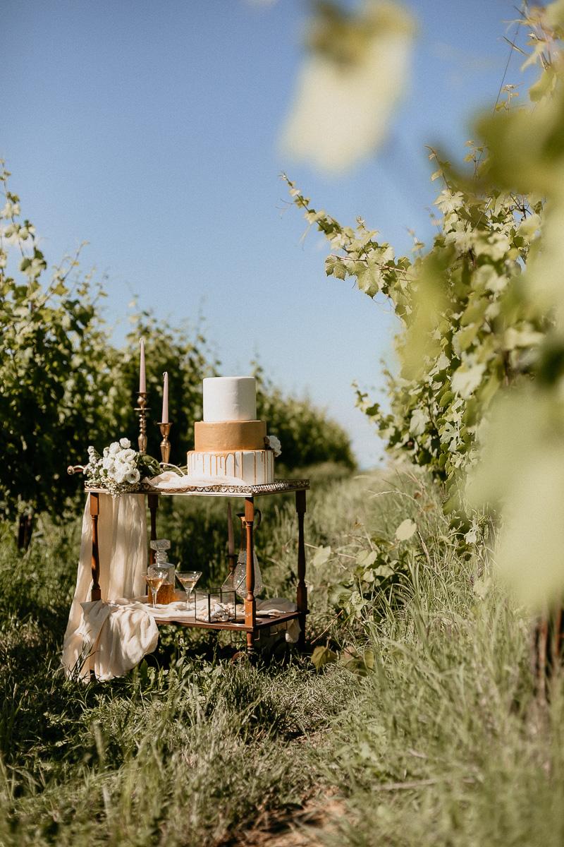 intervista-rossella-gnasso-sposami-oggi-monferrato-22